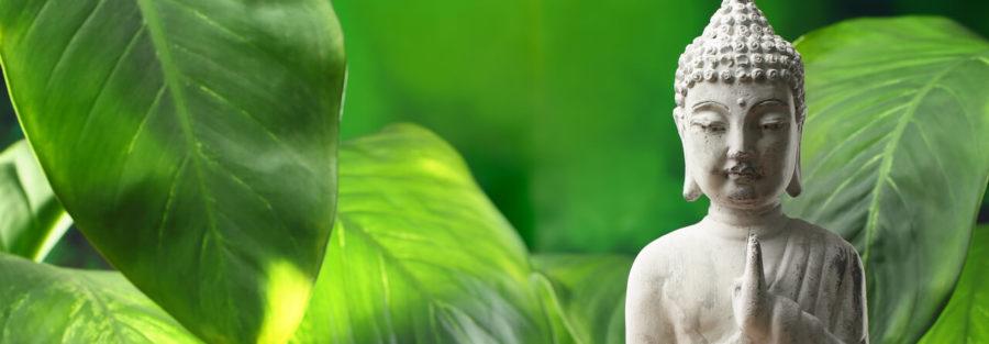 Physiotherapie-Zobel-Dresden-Besonderheiten-Schmerz-Therapie-Buddha